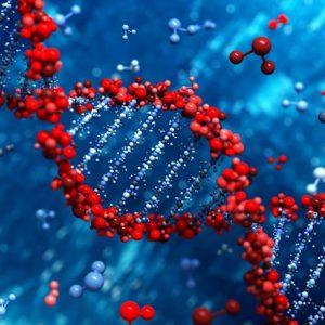 Науково популярна лекція «Як зародилося життя на Землі і еволюція біосфери»