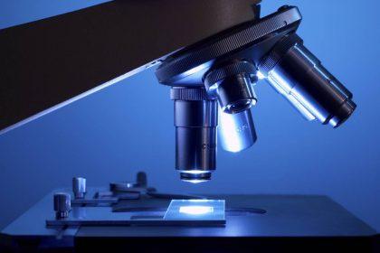 Світ під мікроскопом